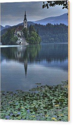 Lily Pads At Lake Bled Wood Print