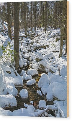 Lily Pads Of Snow Wood Print