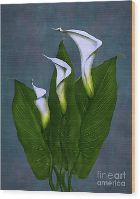 Wood Print featuring the painting White Calla Lilies by Peter Piatt