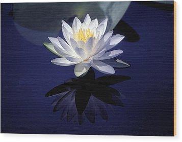 Lily Reflection Wood Print