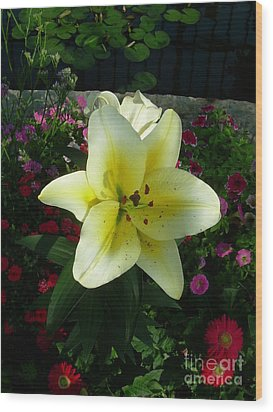 Lily Upon The Pond Wood Print