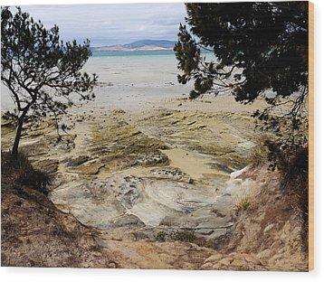 Lime Bay Tasmania 5 Wood Print