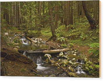 Lime Kiln Creek 1 Wood Print