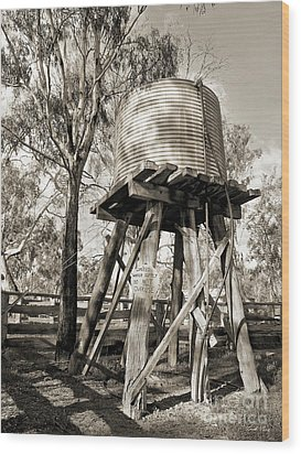 Wood Print featuring the photograph Limited Water Supply by Linda Lees