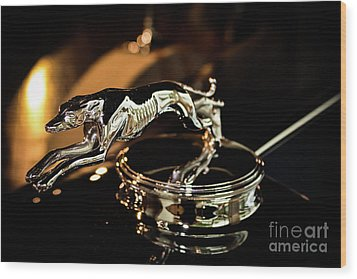 Lincoln Greyhound Hood Ornament Wood Print