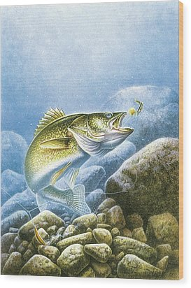 Lindy Walleye Wood Print by JQ Licensing
