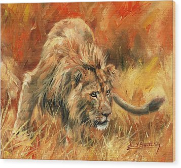 Wood Print featuring the painting Lion Alert by David Stribbling