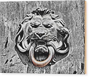 Lion And The Snake Wood Print