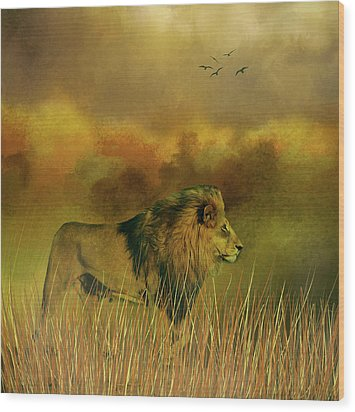 Wood Print featuring the photograph Lion In The Mist by Diane Schuster