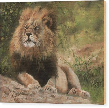 Wood Print featuring the painting Lion Resting by David Stribbling
