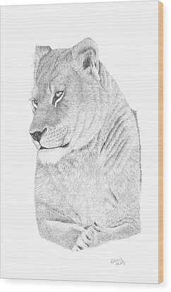 Lioness Wood Print by Patricia Hiltz