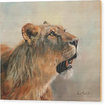 Wood Print featuring the painting Lioness Portrait 2 by David Stribbling