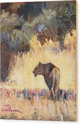 Lioness Stalking Wood Print by Ron Wilson