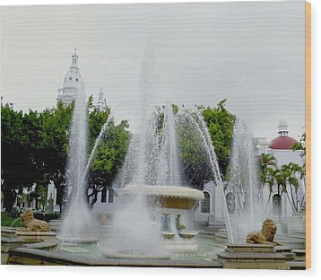 Lions Fountain, Ponce, Puerto Rico Wood Print