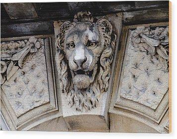 Lions Head Wood Print by Tony Grider