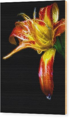 Wood Print featuring the photograph Liquid Lily by Cameron Wood