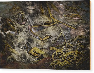 Listening To The Semifrozen Marsh Wood Print