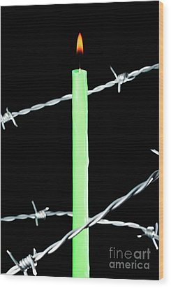 Lit Candle Surrounded By Barbed Wire Wood Print by Sami Sarkis