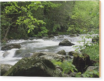 Litltle River 1 Wood Print by Marty Koch