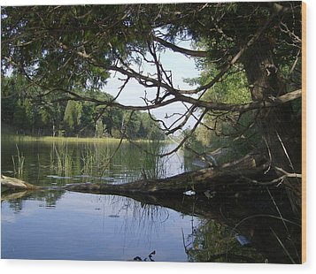 Little Ausable River Wood Print