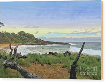 Wood Print featuring the photograph Little Beach by DJ Florek