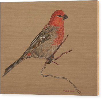 Little Bird Wood Print by Michelle Miron-Rebbe