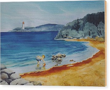 Little-boy-at-the-beach Wood Print by Nancy Newman