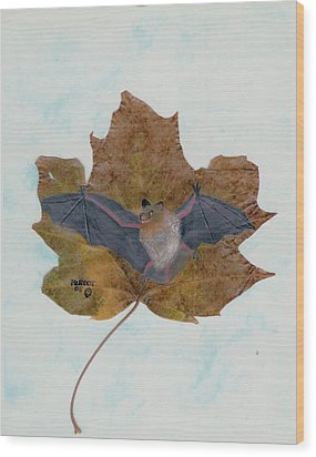 Little Brown Bat Wood Print