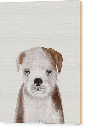 Wood Print featuring the painting Little Bulldog by Bri B