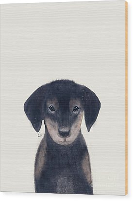 Wood Print featuring the painting Little Dachshund by Bri B
