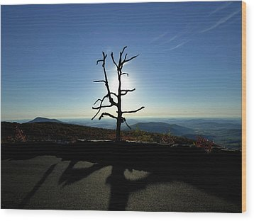 Wood Print featuring the photograph Little Devil Stairs Overlook by Robert Geary