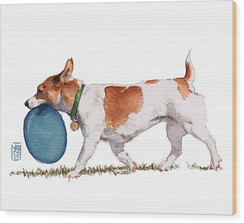 Little Dog With Blue Frisbee Wood Print by Debra Jones