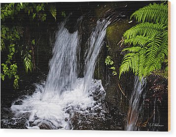 Little Falls Wood Print by Christopher Holmes
