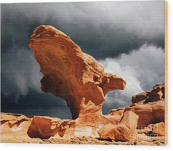 Wood Print featuring the photograph Little Finland Nevada 8 by Bob Christopher