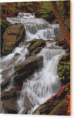 Wood Print featuring the photograph Little Four Mile Run Falls by Suzanne Stout