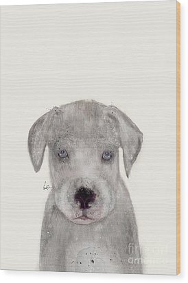 Wood Print featuring the painting Little Great Dane by Bri B