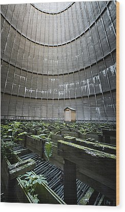 Wood Print featuring the photograph Little House Inside Industrial Cooling Tower by Dirk Ercken