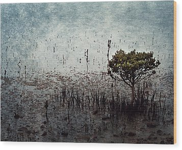 Little Mangrove Wood Print by Margaret Hormann Bfa