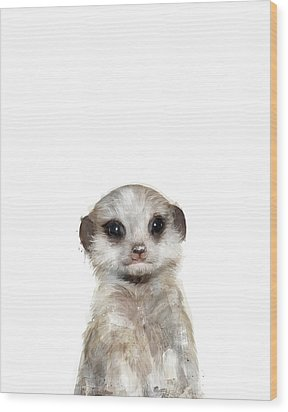 Little Meerkat Wood Print