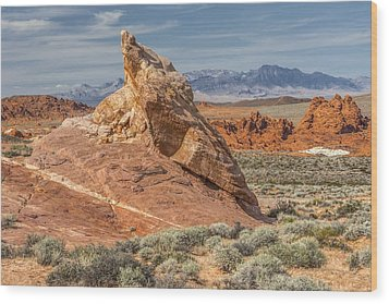 Little Monument In Valley Of Fire Wood Print