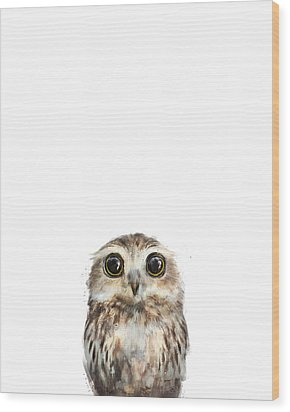 Little Owl Wood Print by Amy Hamilton