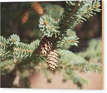 Little Pine Cones Wood Print by James Granberry