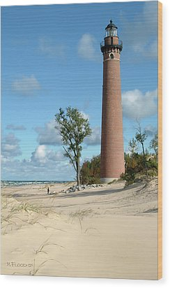 Little Point Sable Light Wood Print by Michael Flood