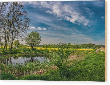 Little Pond Near A Rapeseed Field Wood Print
