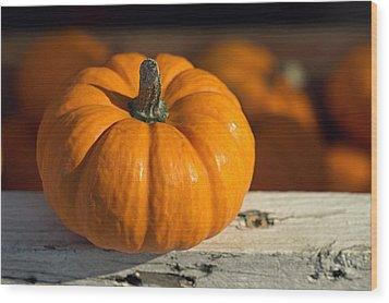 Little Pumpkin Wood Print by Joseph Skompski