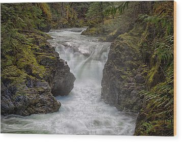 Little Qualicum Lower Falls Wood Print by Randy Hall