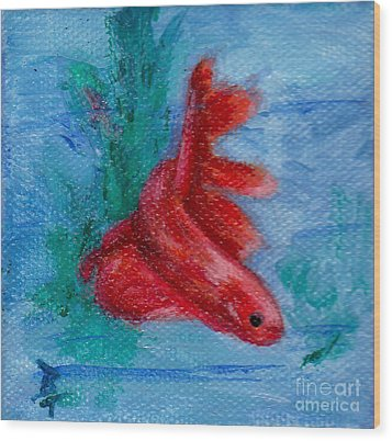 Little Red Betta Fish Wood Print