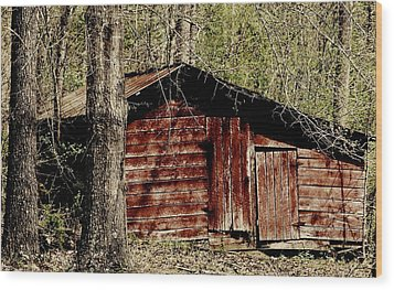 Little Red Shed Wood Print by Ginger Barritt