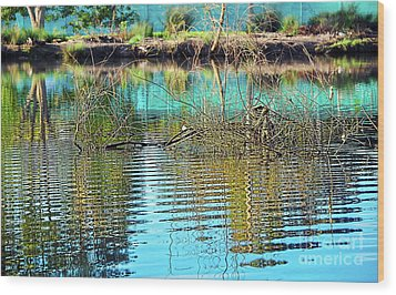 Little Ripples By Kaye Menner Wood Print by Kaye Menner