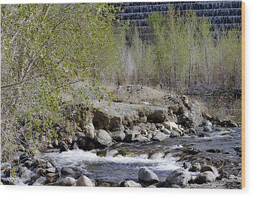 Wood Print featuring the photograph Little Rock by Ivete Basso Photography